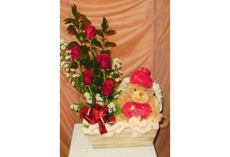Arranjo 05 Rosas + Pelúcia